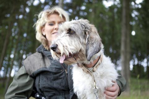 Jakthund med Pia Hansen