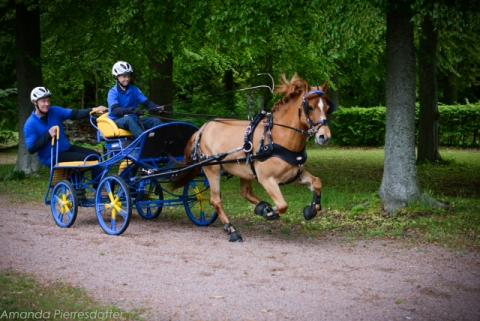 Körningen tar plats i Falsterbo