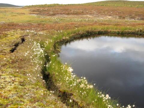 Termokarst i norra Sverige