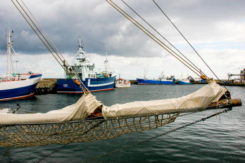 Nordic Sea Winery_Hamnen i Simrishamn