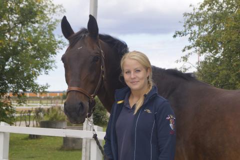 Stort intresse för hästutbildningar