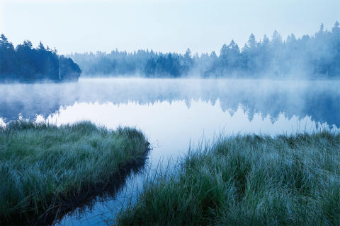 Naturpark Doubs, Etang de la Gruere