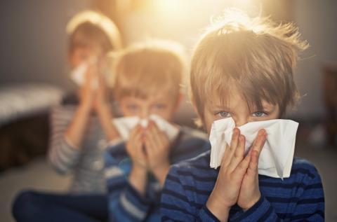 Lämmin loppuviikko käynnistää siitepölykauden – allergialääkkeet kannattaa hankkia nyt