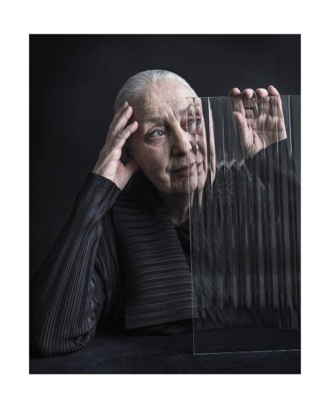 Portrait of Honour 2019