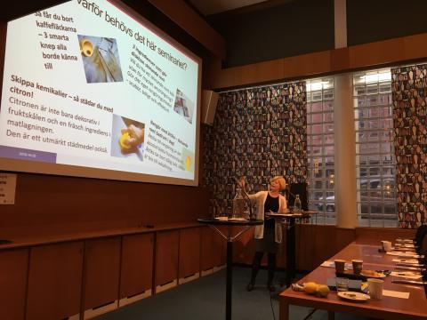 Frukostseminarium om miljövänlig städning - Anna Melvås