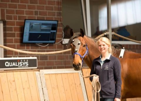 Qualisys demonstrates Veterinarian tool for analysis of Horse Lameness.