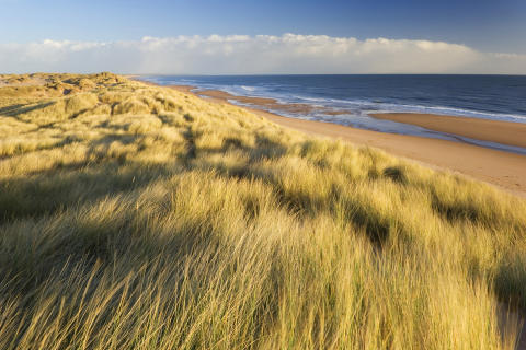 Sun shines on Scotland's beach standards