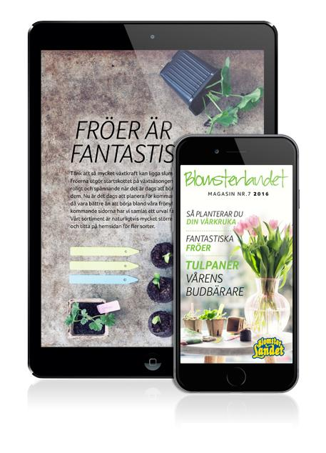 Blomsterlandets digitala magasin