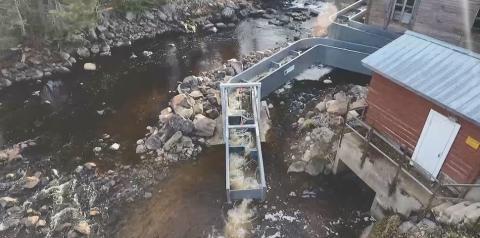 Ny uppfinning med flexibel fisketrappa i Storforsen