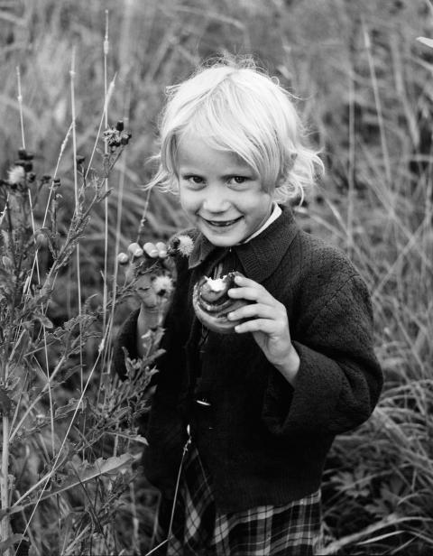 Kanelbullens dag firas med Socker på Nordiska museet