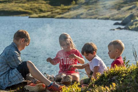 Grillning vid Svansjön