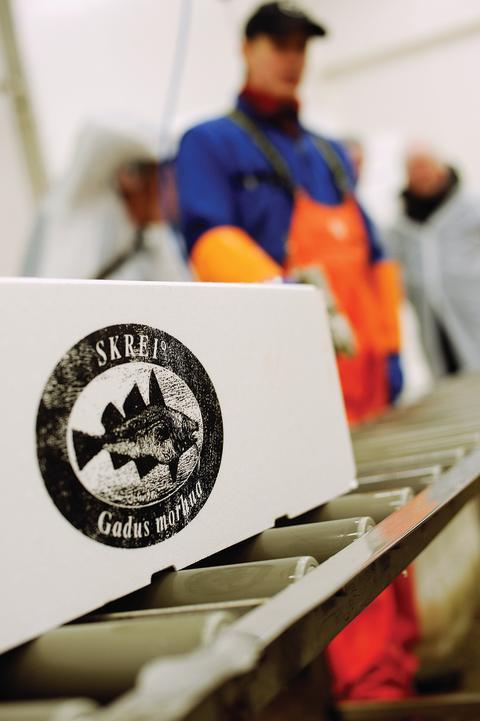 """Cabillaud Skrei portant le label """"Skrei de Norvège"""""""