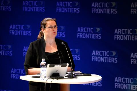 Liv Monica Stubholt to moderate Arctic Frontiers Business 2017