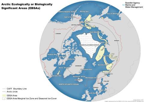 """Marina experter samlas: """"Arktis vatten behöver ökat skydd mot klimatförändring och havsförsurning"""""""