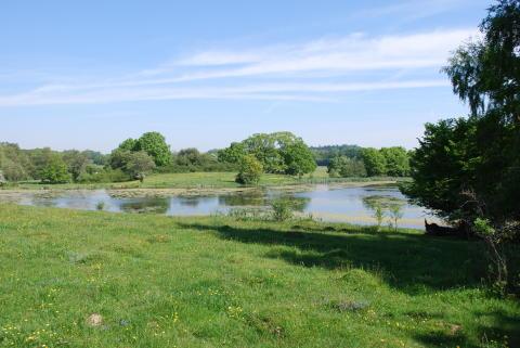 18 nya beslut om statliga naturreservat i Skåne 2016
