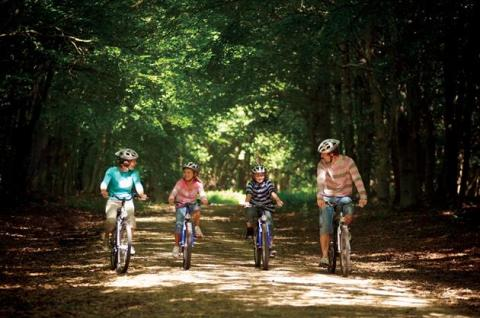 Summer break sales booming at Center Parcs