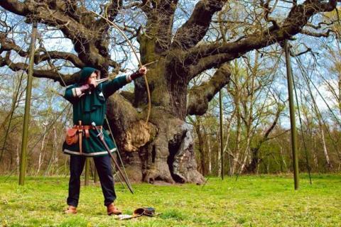 Inkassobransjen: Hvem jagde Robin Hood til skogs?
