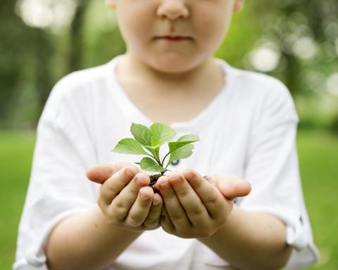 Tjust behandlingsfamiljer tänker på miljön!