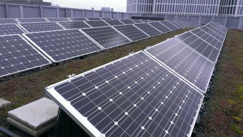 Fortsatt stark utveckling för solenergin i Skåne