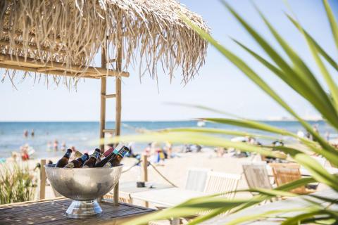 Slå følge med strandløver og badenymfer i Halland