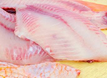 Fresh tilapia prices firm up on US market