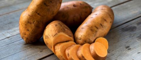 Sweet Potato Market Growth, Trends and Forecast 2019 – 2027 Explored in Latest Research With Key Players Such as AV Thomas Produce,Dole Food Company Inc.,Ham Farms,Jackson Farming Company