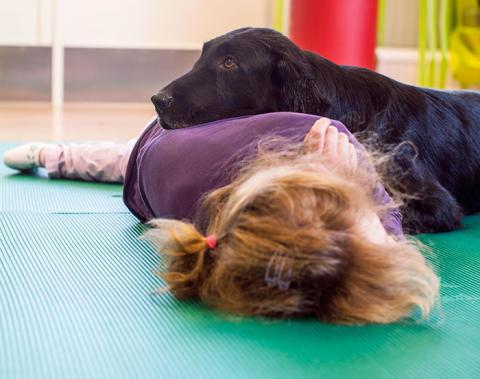 Terapihund kan hjälpa funktionsnedsatta barn