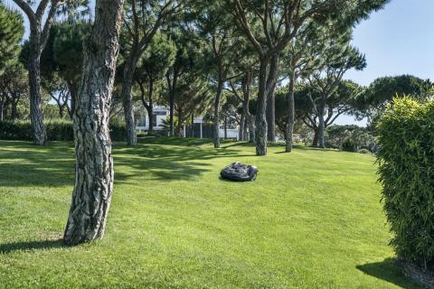 Automower klipper græsset for boligforening (6)