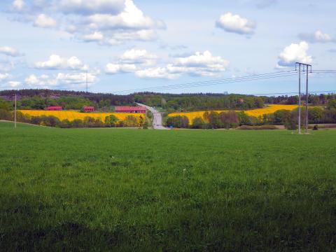 Strømnett i Sverige