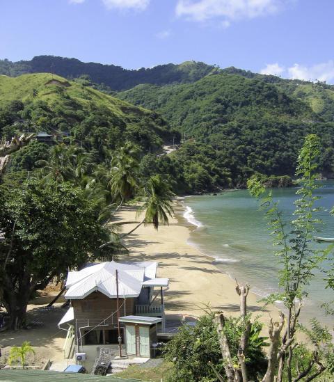 Vinter 2013 / 2014: Direkte charter til Tobago