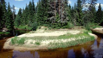 Vi har två nya naturreservat i Värmland