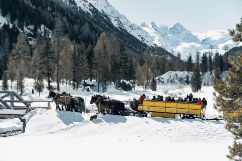 Val Roseg, Wohli's Kutschenbetrieb