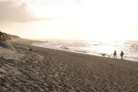 Strandspaziergang im Winter