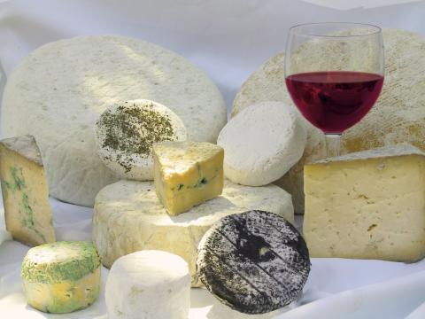 Vin-och ostprovning