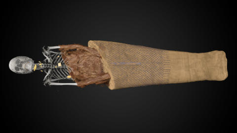 3D visualization of the mummy Ankhhor from Dutch National Museum of Antiquities.