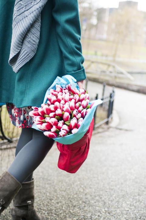 Tulpaner på väg