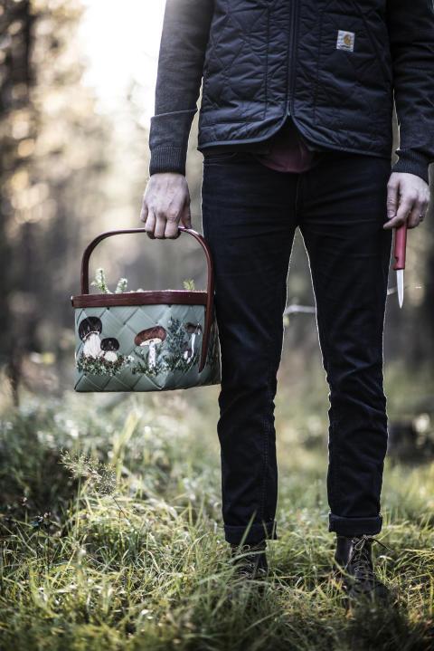 Foraging, Jämtland Härjedalen