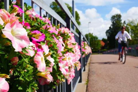 Blommor och cyklist vid Sandgrundsbron