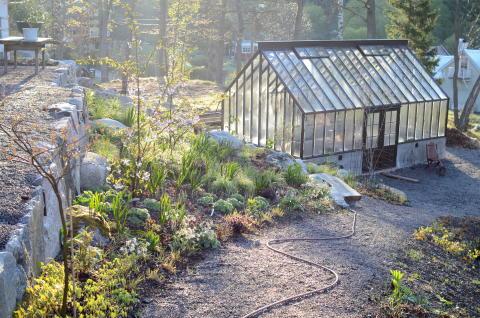 Mitt växthus i våras