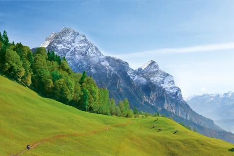 Castello Alps Selection - landscape
