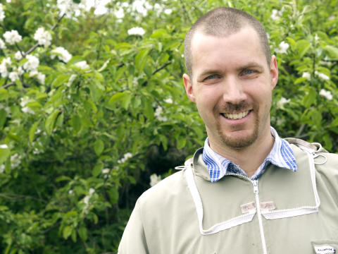 12 hektar äppelodling är beroende av Martins bin
