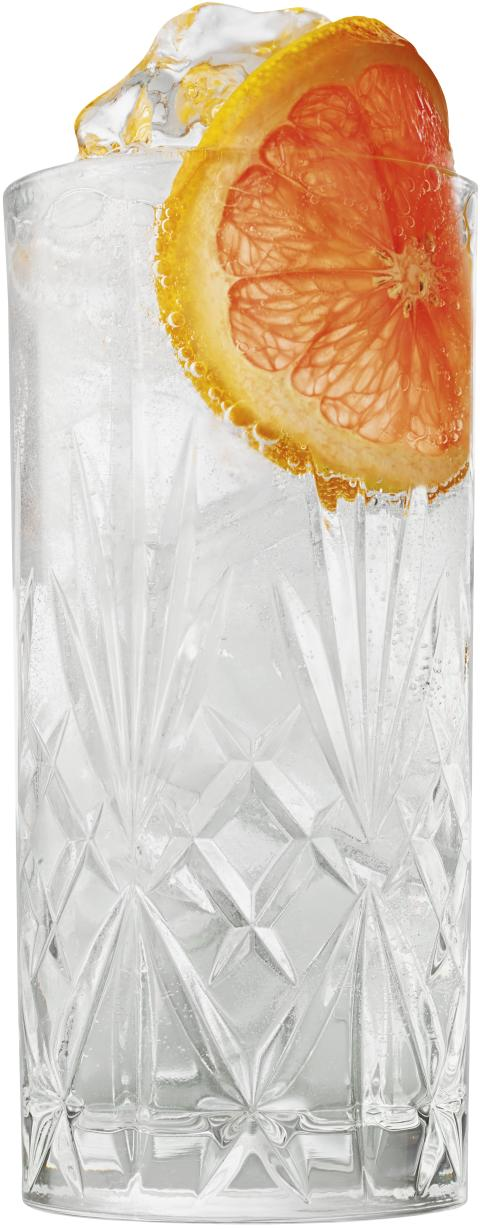 SOMMER_BEEF_24_GIN_TONIC