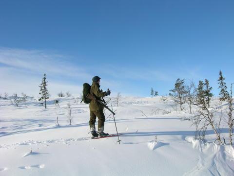 Vinterjakt Foto: Torkel Skoglund