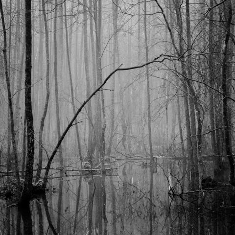 © Andrius Grigalaitis, Lithuania, Shortlist, Professional competition, Landscape , 2020 Sony World Photography Awards (3)