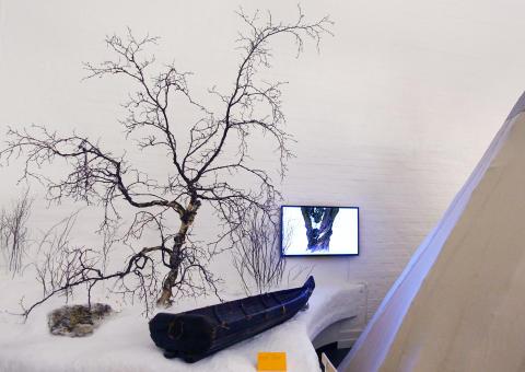 Susanne Jablonski, After Nature, 2017 på Ájtte, Svenskt Fjäll- och Samemuseum