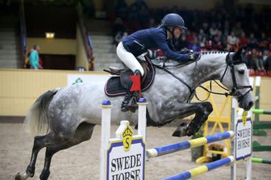 Fem sjuåriga hästar klara för Sweden International Horse Show