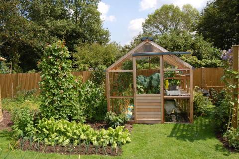 Litet växthus i cederträ