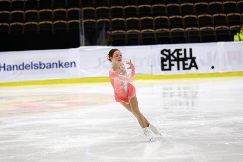 Kvalificerade till Elitseriefinalen i Konståkning 13 - 15 april