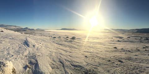 Foto; Kjetil Letto. Vinterlys på Leina.