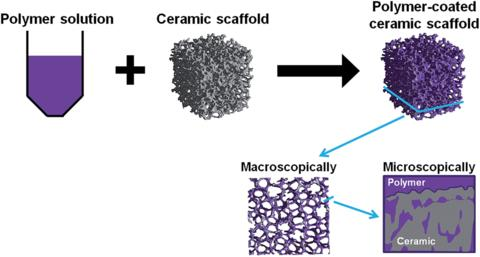 Research details developments in the Global Scaffold Based 3D Cell Culture market forecast, 2017-2021